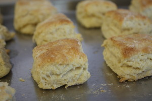 freshly made biscuits
