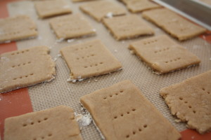 graham crackers ready to bake