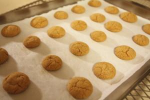 freshly baked gingersnaps