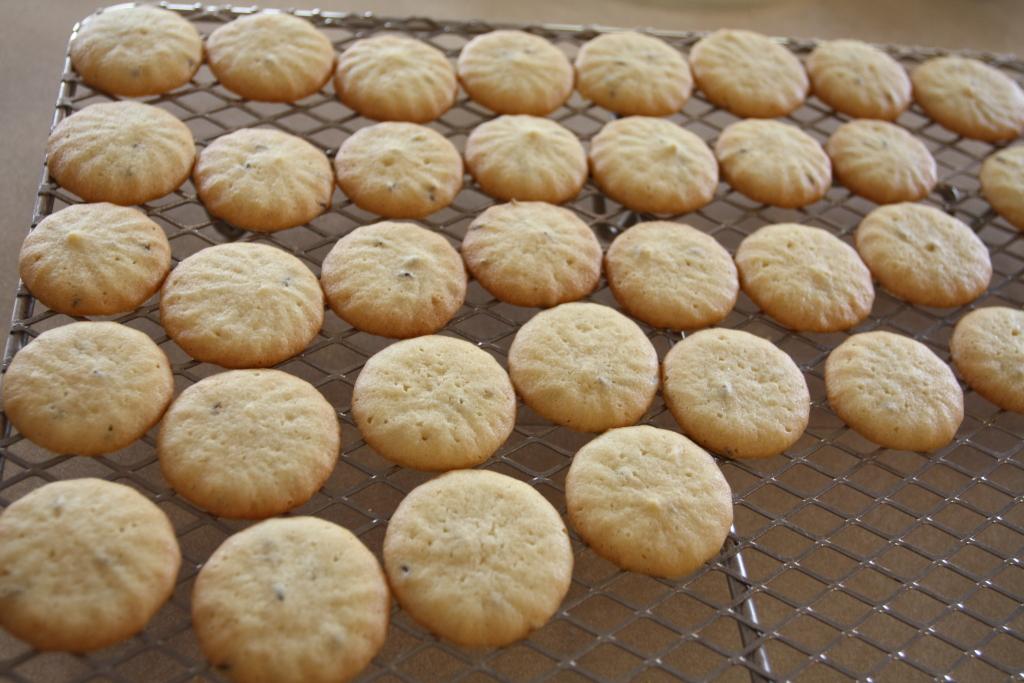 Caraway Seed Cookies